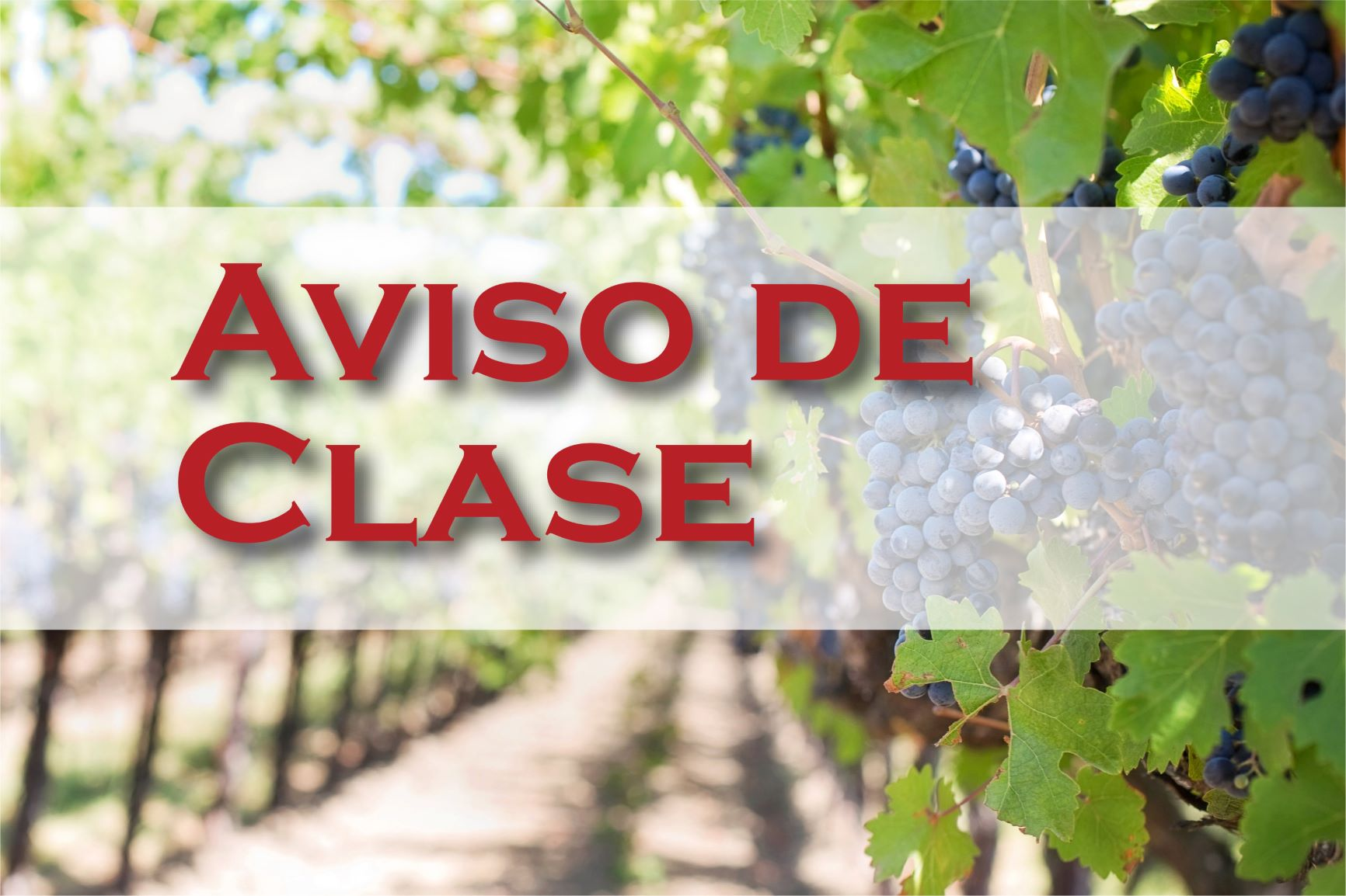 'Aviso de Clase - Rosas v. Sarbanand Farms'