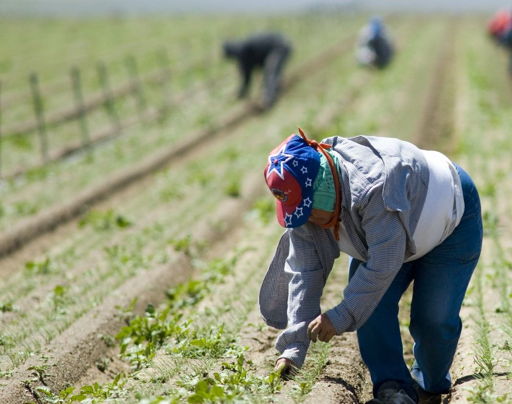 'Washington H-2A Workers Sue One of the Nation's Largest Agricultural Employers'